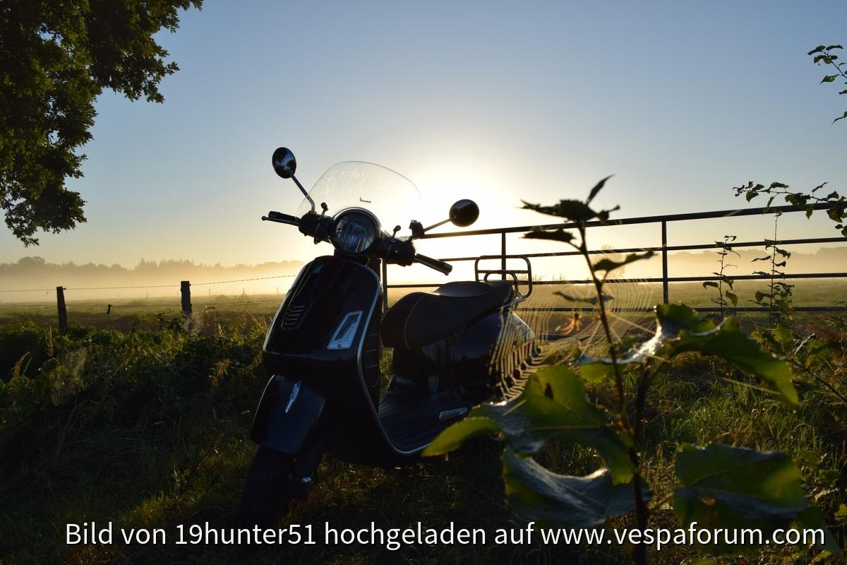 """""""Wespe und Spinne"""" - Altweibersommer in Petersfehn - Bad Zwischenahn - Vespa GTS 300"""