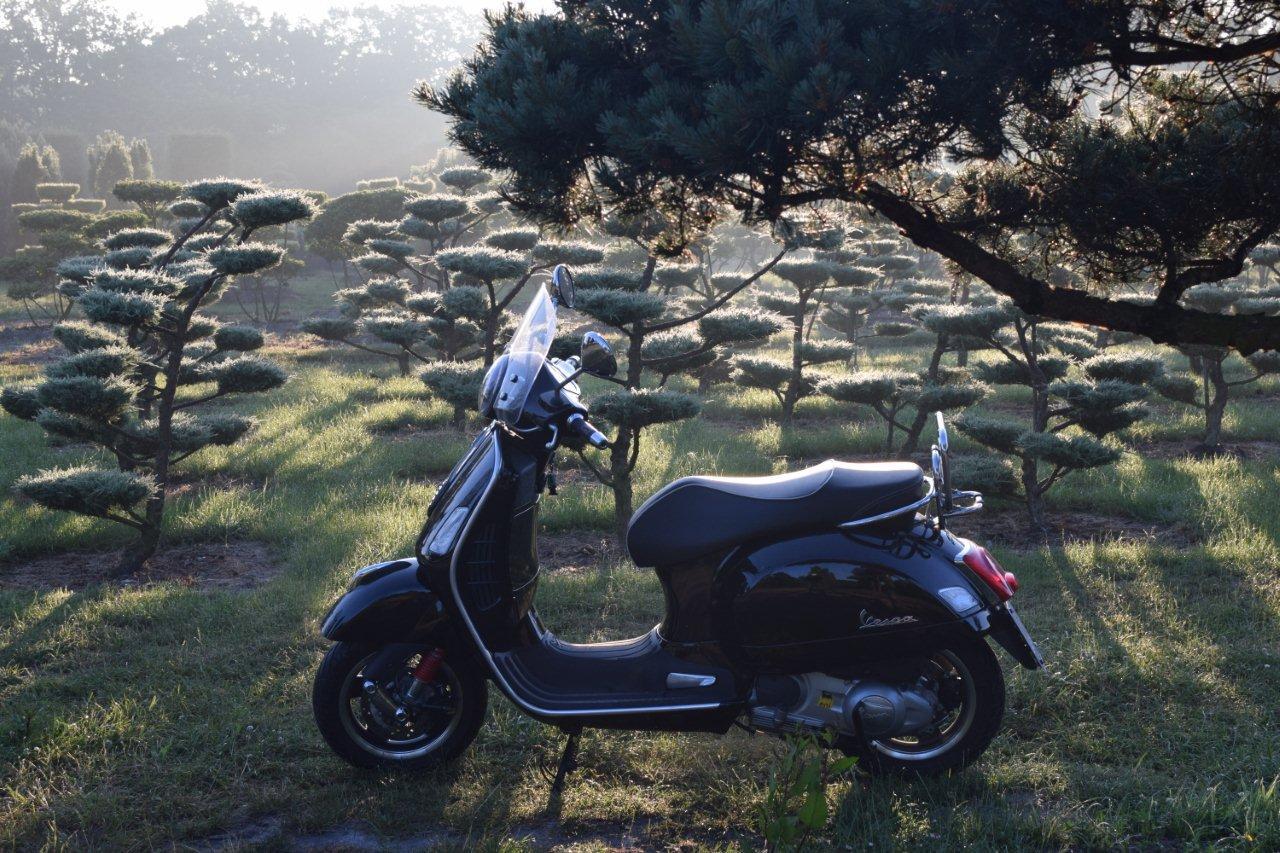 italienische und japanische Formen - Bad Zwischenahn - Ammerland - Vespa GTS 300