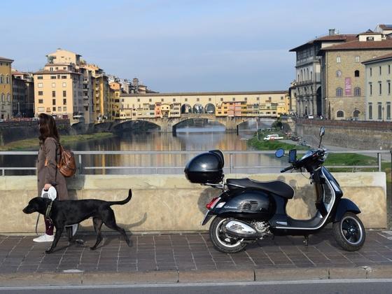 Florenz Florence Firenze - Ponte Vecchio - Toscana - Vespa GTS 300